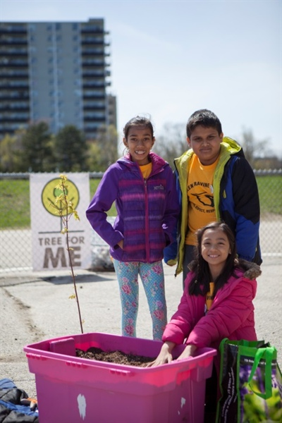 Students at Glen Ravine PS Lead Urban Forest Restoration Project
