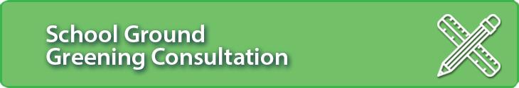 School Ground Screening Consultation