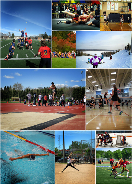 The end of year collage depicts a number of sports that TDSB students had the opportunity to compete in this year across the city.