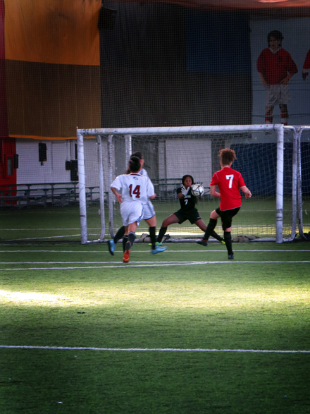 A player takes a shot on goal that is blocked by the goalie.